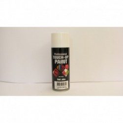 Professional Touch Up Paint Gloss White Aerosol